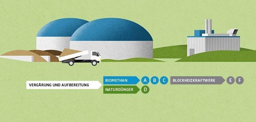 Ausschnitt aus der Infografik: Klimaschutz dank Grünabfällen