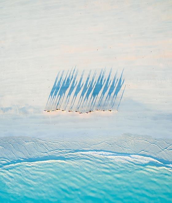 Luftaufnahme einer Kamelkolonne in Cable Beach, Australien.